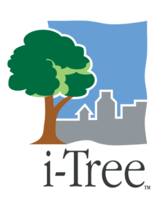 i-Tree Projects logo